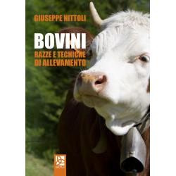 Bovini - Razze e tecniche di allevamento